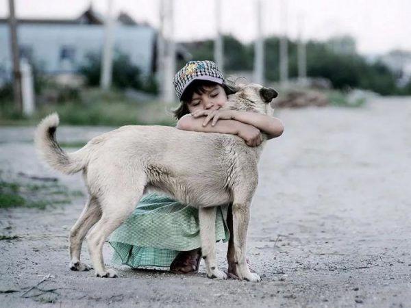 Лямблиоз - награда за общение малышей с уличными животными
