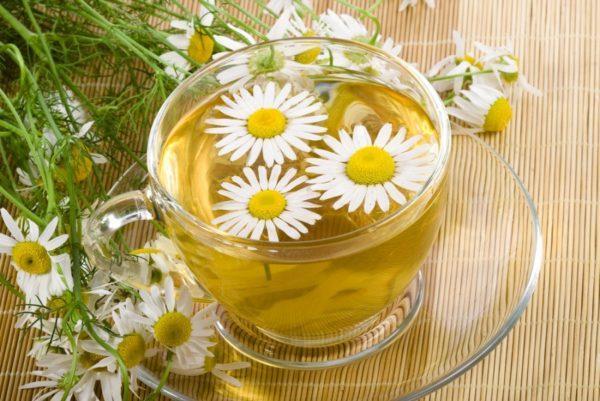 Не стоит пить отвар из цветков ромашки сильно концентрированным