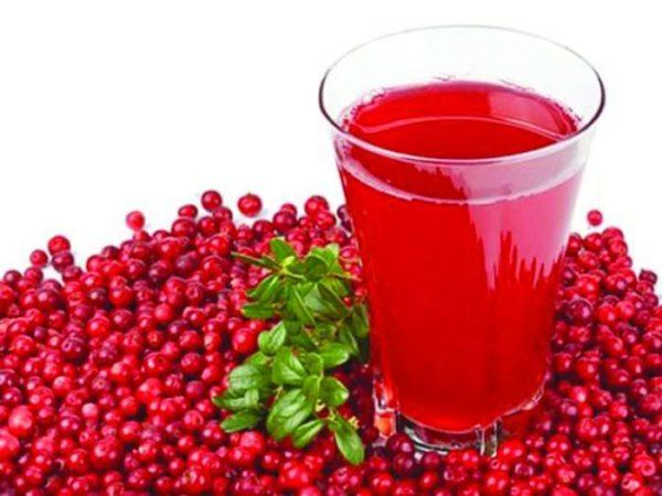 Клюквенный сок нашел широкое применение в народной медицине