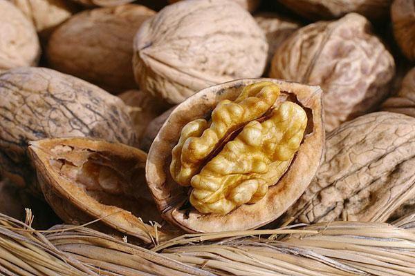 Грецкий орех помогает быстро избавиться от диареи у взрослых