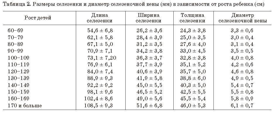 Размеры селезенки в зависимости от роста ребенка