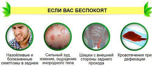 Симптомы при геморрое у мужчин
