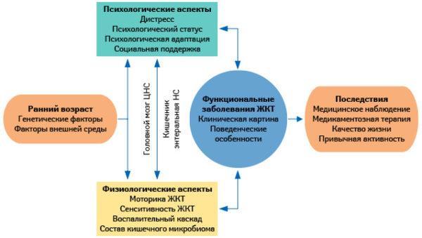 Биопсихологическая концептуальная модель функциональных заболеваний ЖКТ
