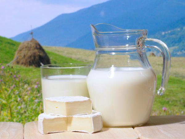 Цельное молоко нужно исключить из рациона