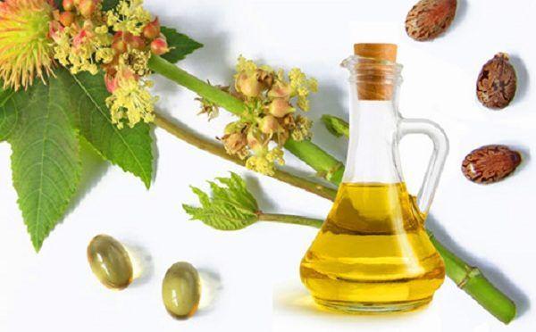Цветы, семена клещевины и касторовое масло