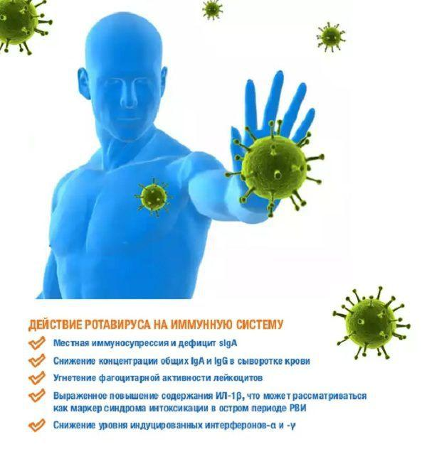 Действие вируса на иммунную систему