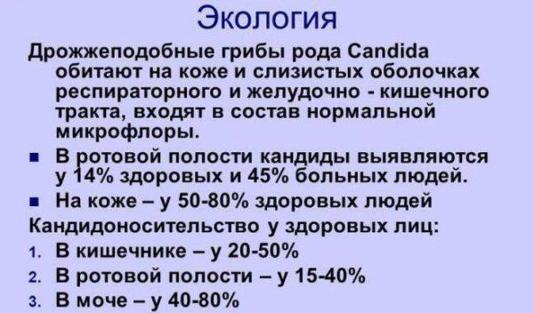 Грибы Кандида. Экология