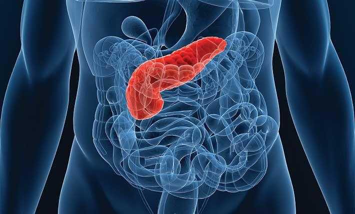 Как лечит панкреатит поджелудочная железа thumbnail