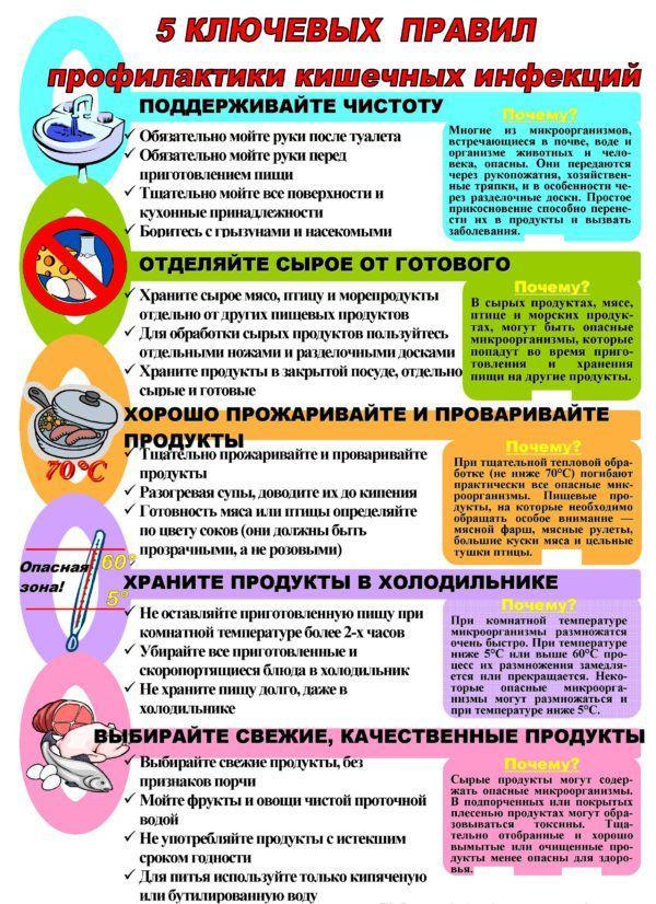 Меры профилактики кишечных инфекций