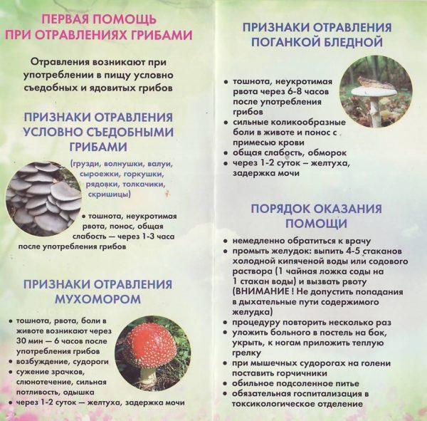 Отравление мухомором и поганкой