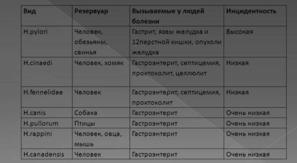 Патогенные хеликобактерии