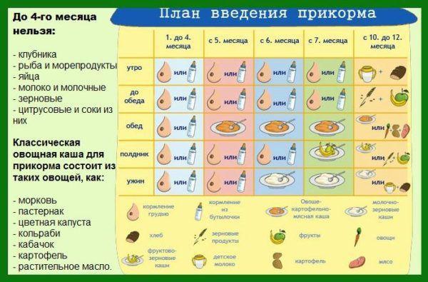 План введения прикорма для грудничков