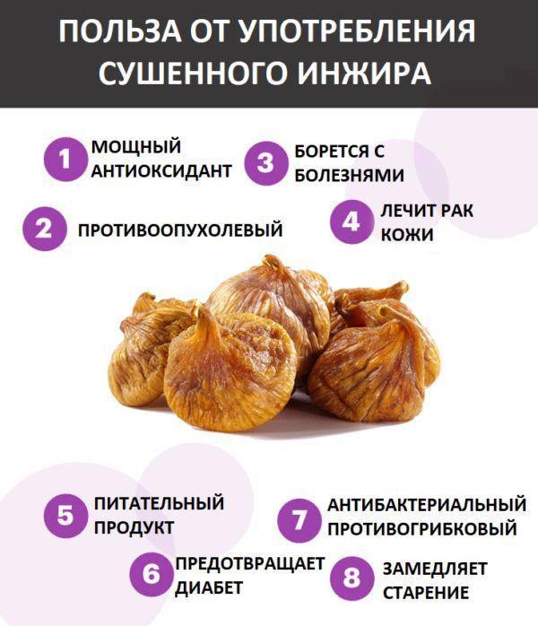 Польза сушенного инжира