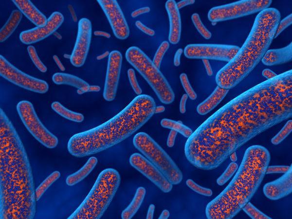 Кроме того, организм более склонен к инфекциям, так как иммунитет снижен в постоянной борьбе, идущей внутри