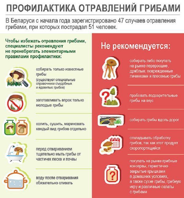 Продукты питания - ЗАКИСЛЯЮЩИЕ и ОЩЕЛАЧИВАЮЩИЕ 7