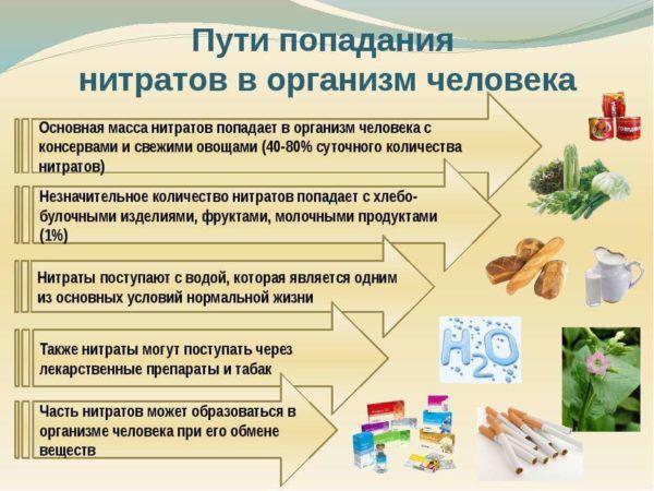 Пути попадания нитратов в организм