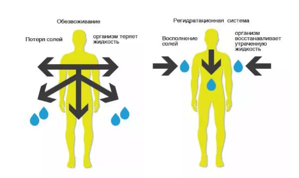 Регидратация организма