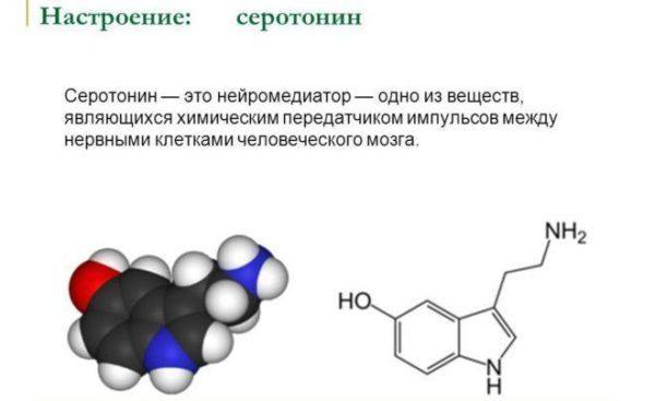 Серотонин — что это такое