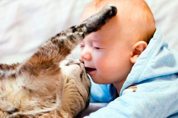 """Не разрешайте детям и домашним животным """"целоваться"""""""