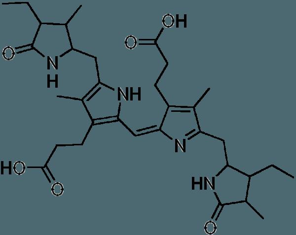 Стеркобилин — это тетрапиррольный желчный пигмент и конечный продукт метаболизма гема