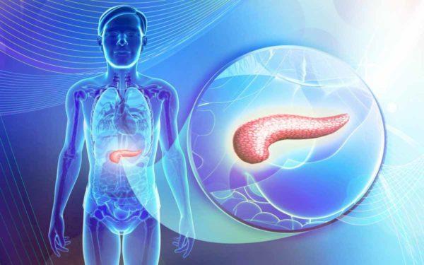 Аденокарцинома поджелудочной железы проявляется снижением массы тела, отсутствием аппетита, ухудшением самочувствия