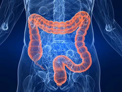 Альтернатива колоноскопии кишечника