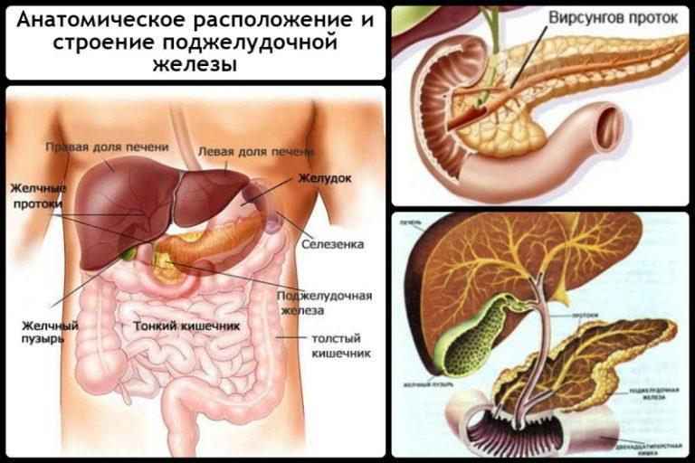 Диффузные изменения поджелудочной железы симптомы