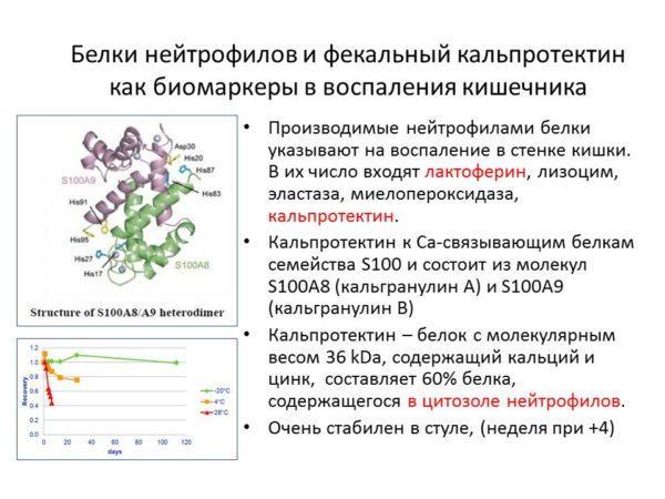Белки нейтрофилов и кальпротектин фекальный как биомаркеры воспаления кишечника