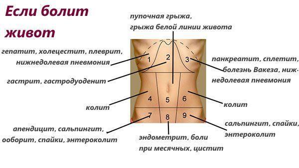 Болезни в зависимости от локализации боли