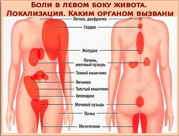анал и болит отдает в в левом боку