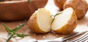 Картофель в любом виде