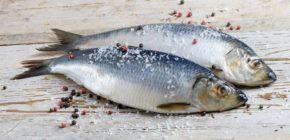 Консервированная в рассоле рыба, 100 г