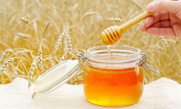 Мед при гастрите не всегда разрешен