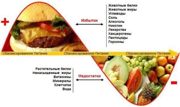 Несбалансированное и сбалансированное питание