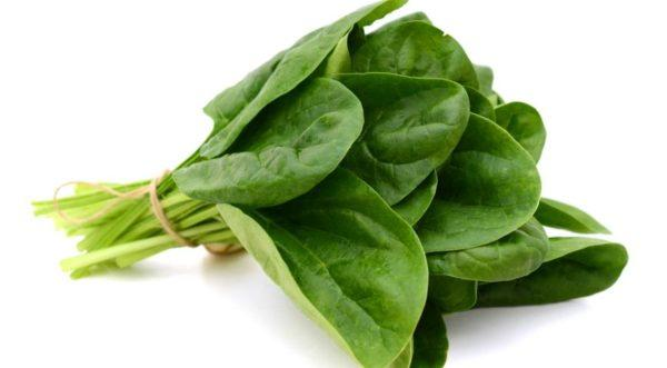 еленый цвет рвоты может напрямую отражать пищевое отравление, если продукты были зеленого цвета. Например, несвежими огурцами, шпинатом, брокколи