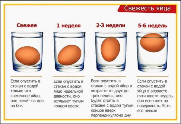 Схема определения свежести яйца