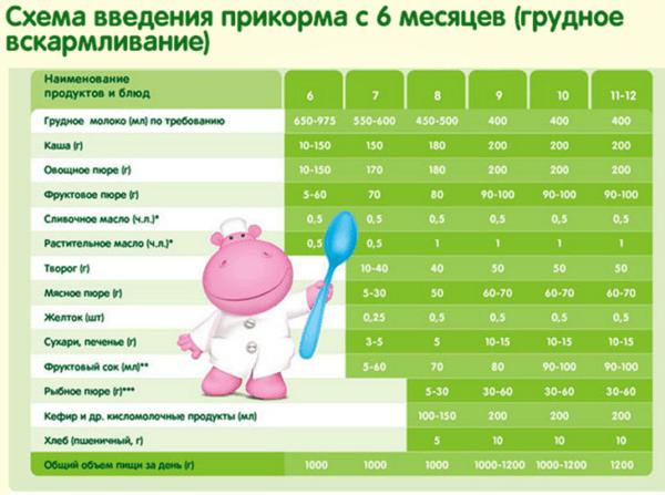 Схема введения прикорма