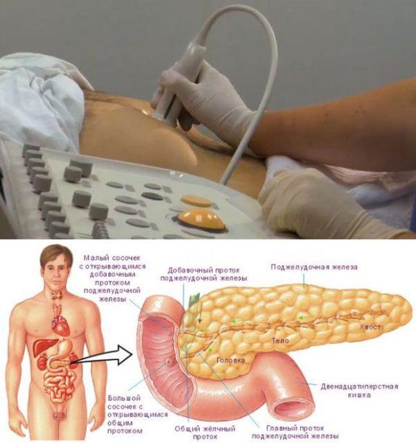 УЗИ поджелудочной железы