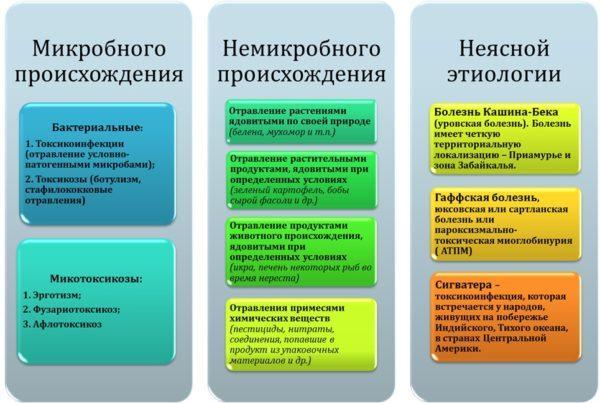 Виды пищевых отравлений - схема