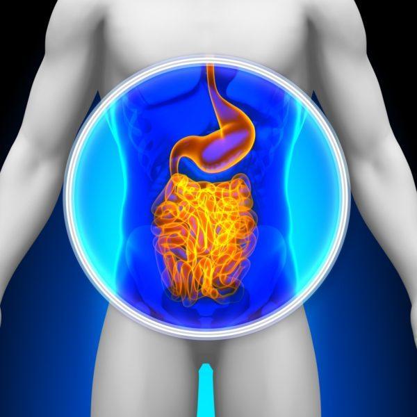 Желудок является полым органом, поэтому врачи МРТ предпочитают гастроэндоскопию