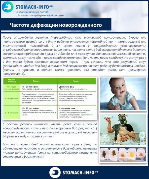 Частота дефекации новорожденного