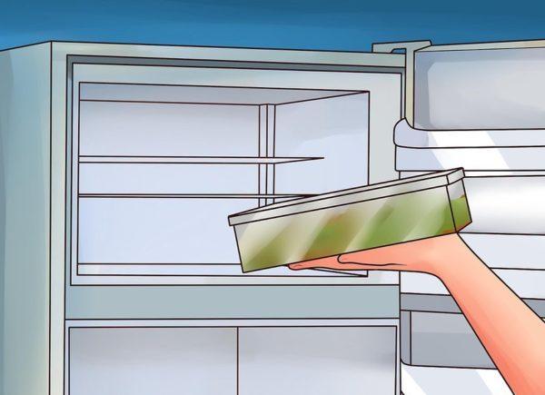 Храните продукты в холодильнике