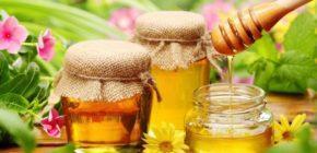 Мед для кишечника и желудка