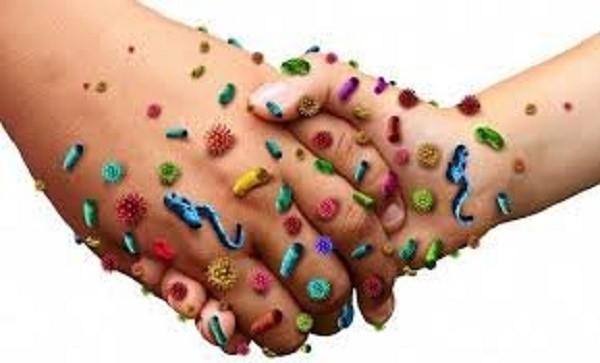 На коже рук и под ногтевыми пластинами скапливаются миллионы болезнетворных организмов