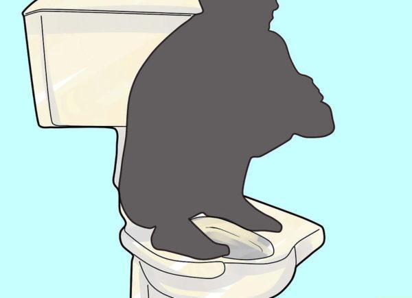 Правильная поза для эффективной очистки кишечника