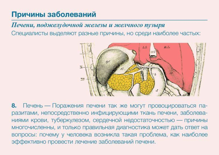 Диагностика заболеваний печени и поджелудочной железы