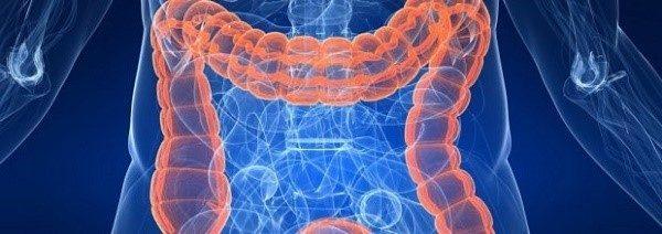 Продукты, вызывающие брожение в кишечнике