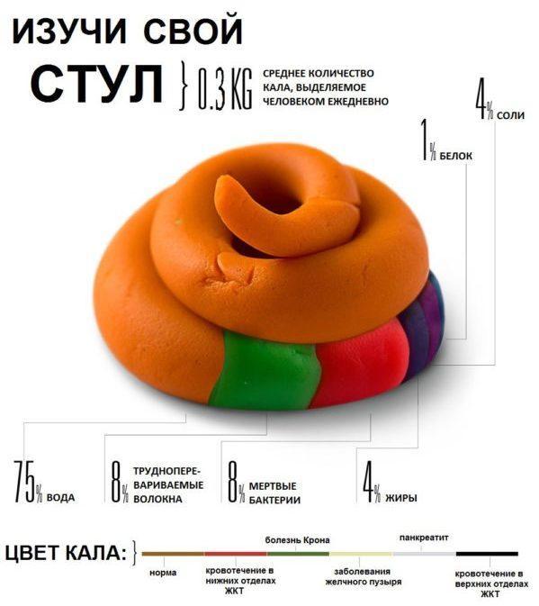 Цвет и состав кала человека