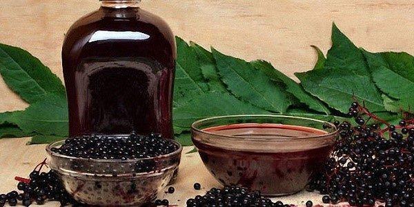 Черемуха - еще одно народное средство для борьбы с диареей