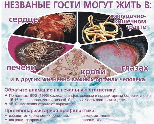 Как глисты попадают в организм человека